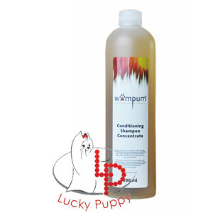 Wampum Conditioning shampoo concentrate